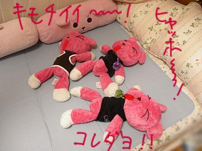 2011_06210034.JPG