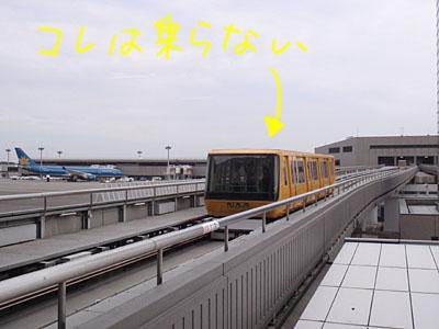 P9110043.JPG