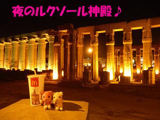 2012_03231349.JPG