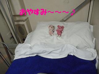 2012_03240763.JPG