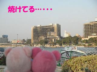 2012_03270680.JPG