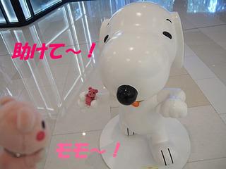 2014_09200248.JPG